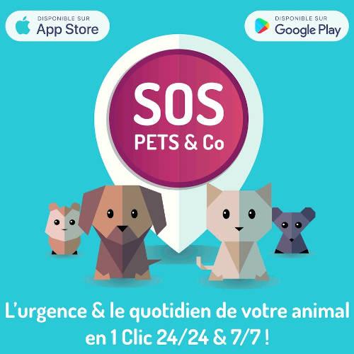 SOS Pets - Partenaire Animal University - Vivre et travailler dans le respect de l'animal