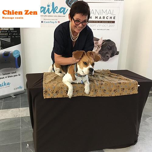 Pauline Arnt - Partenaire Animal University - Vivre et travailler dans le respect de l'animal